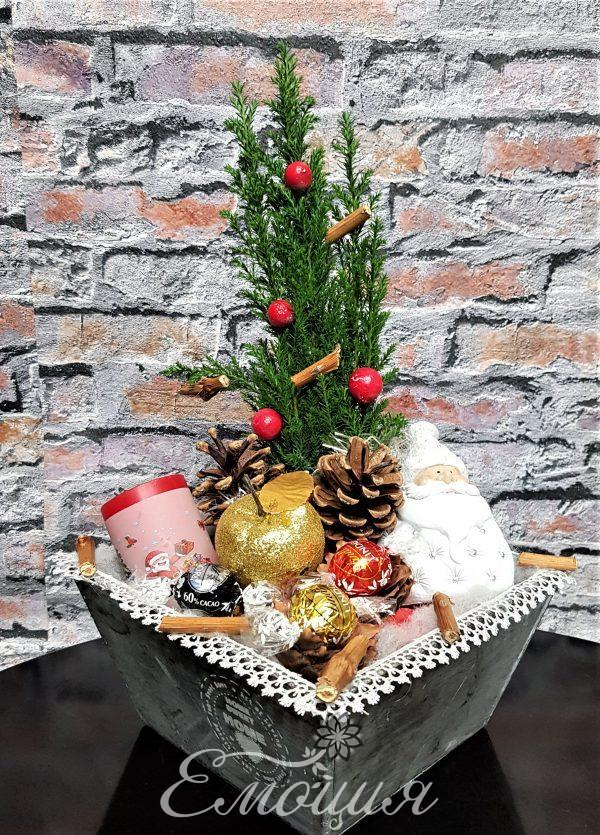 Коледа в къщи
